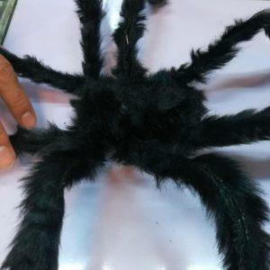 پخش عمده انواع لوازم هالووین و لوازم شوخی انواع عنکبوت